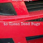Top half of image shows front of red car covered in dead bugs. Bottom half of image shows front of red car that is clean and free from dead bugs. Text overlay says Top 4 Ways to Clean Dead Bugs From Your Car!