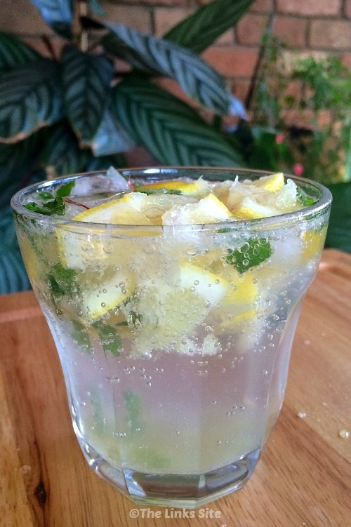 Delicious and thirst quenching virgin mojito for summer! thelinkssite.com